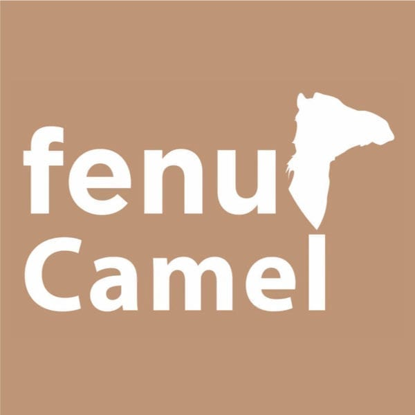 fenu camel fo rfracing camels stomach health food
