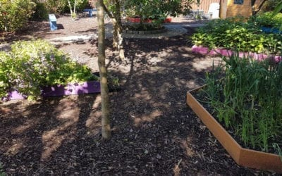 The Childrens Garden at Mellowes | Blog Post